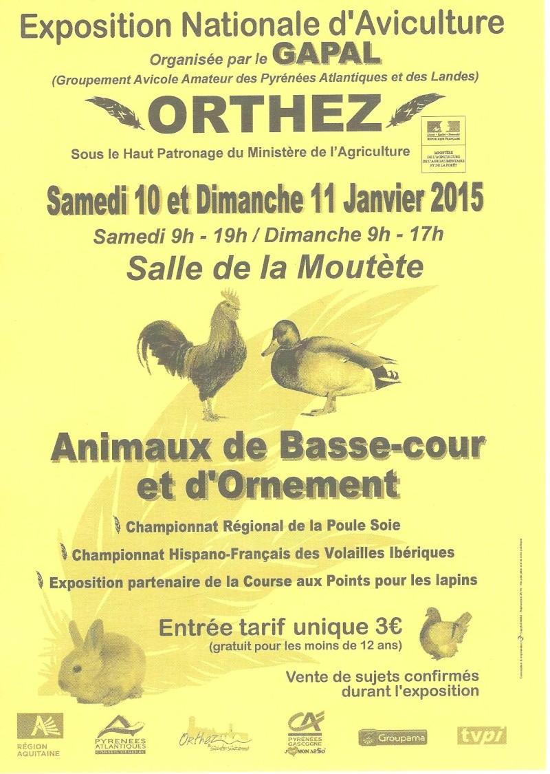Expositions avicoles en JANVIER 2015 Affich12