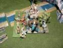 Rapport de bataille 9 000 Pts contre Nagash: P1120919