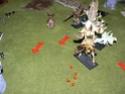 Rapport de bataille 9 000 Pts contre Nagash: P1120927