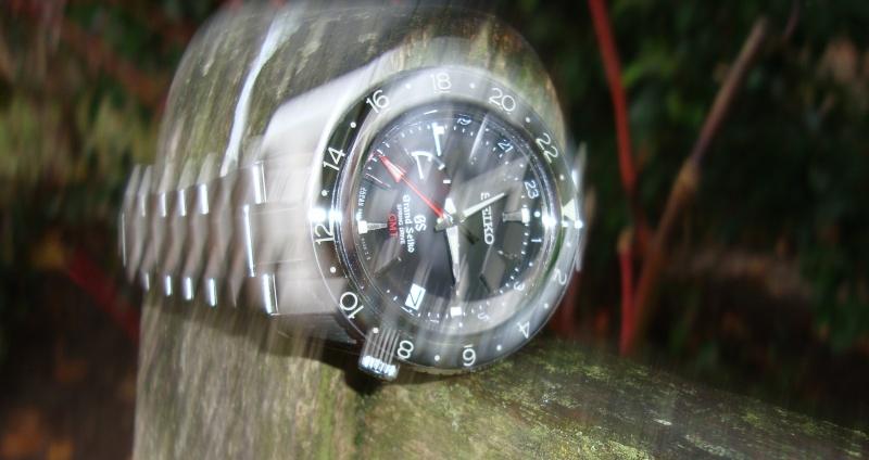 Grand Seiko GMT Dsc02310
