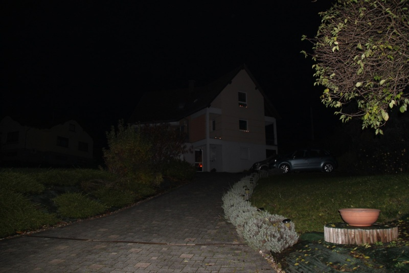 Promenade de la Saint Martin le 11 novembre 2014 à 18h devant le Niedertor de Wangen Img_2517