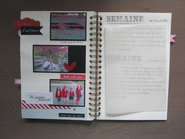 Mon Family Diary 2014 - par Catherine Img_6027