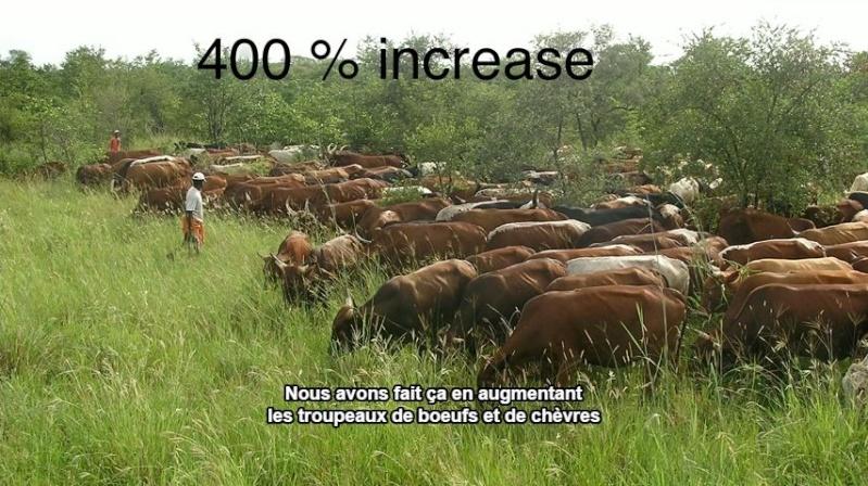 La terre qui nourrit nos chevaux Captur28