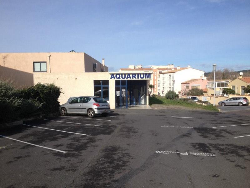 L'aquarium du Cap d'Agde (34) 18887410