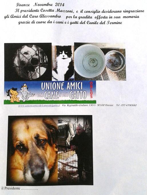 Ciao Ale     - Pagina 2 Unione10