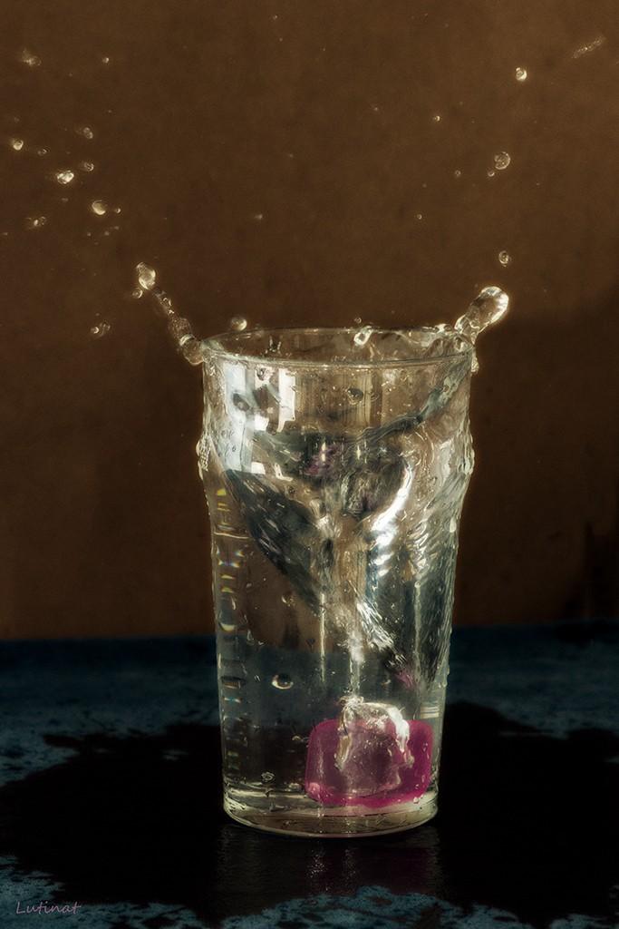 Les gouttes du 22 entre deux verres de rhum!! _dsc9810