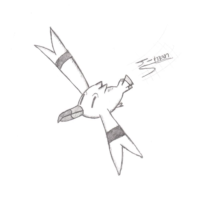 wingull,aqua grunt Winggu10