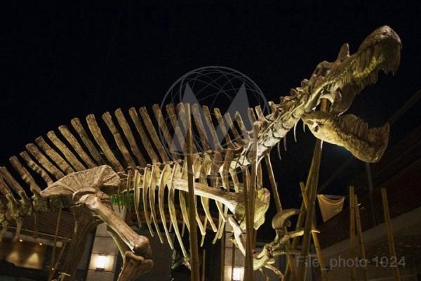 Jurassic World - Page 12 8708010