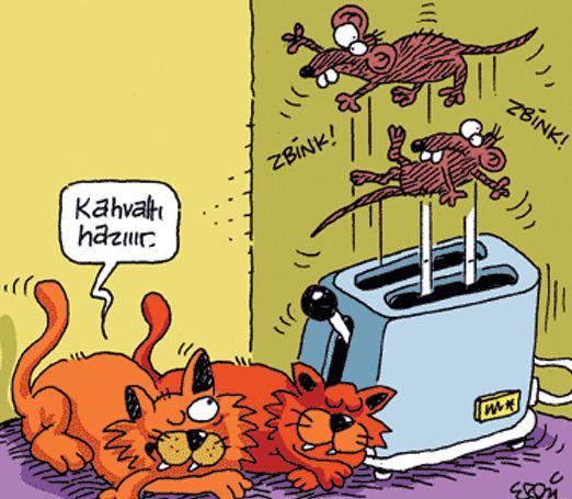 kARİKATÜRLEER Kedini10