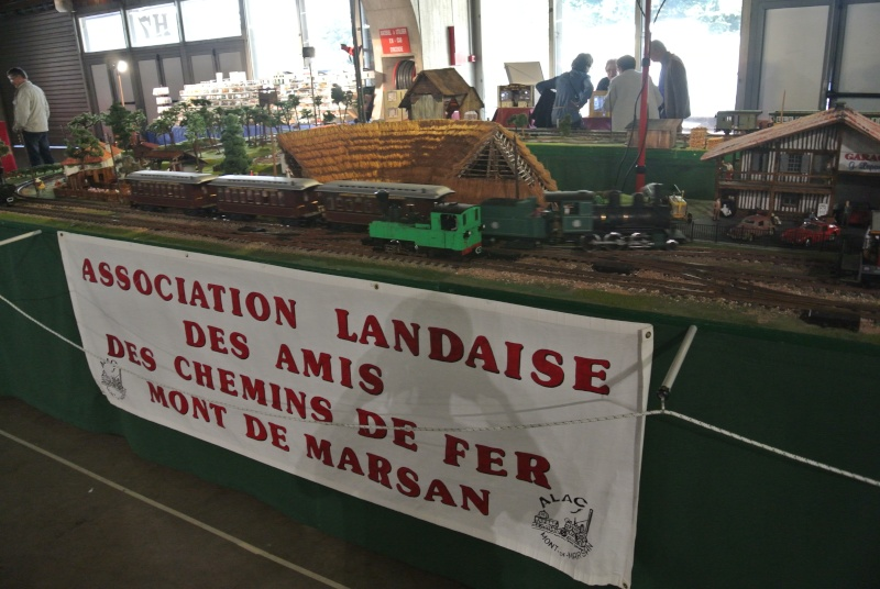Salon du modélisme et de la maquette à Perpignan le 14 , 15 et 16-11-2014 Dsc_1433