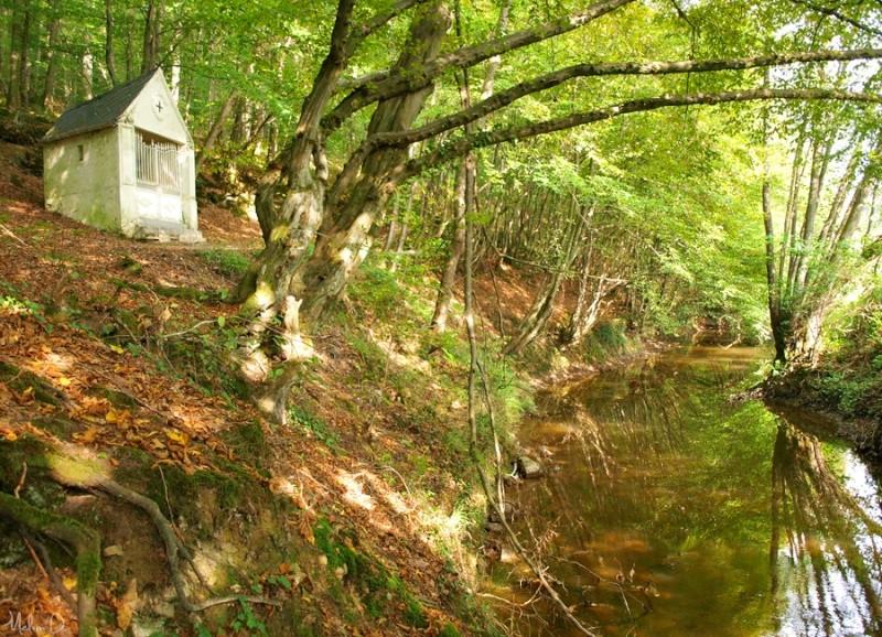 Kagyu Samyé Ling Belgique - Les jardins de méditation: Un nouveau centre international de retraite en Belgique P9230910