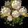 [Ecosystème] Les temps de pousse Croton10
