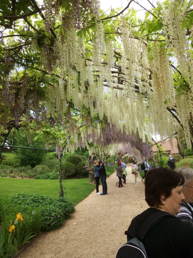 Parc Floral d'Apremont sur Allier 23710