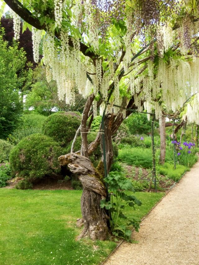 Parc Floral d'Apremont sur Allier 23910