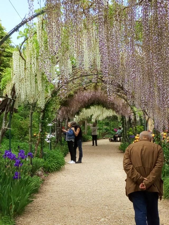 Parc Floral d'Apremont sur Allier 24010