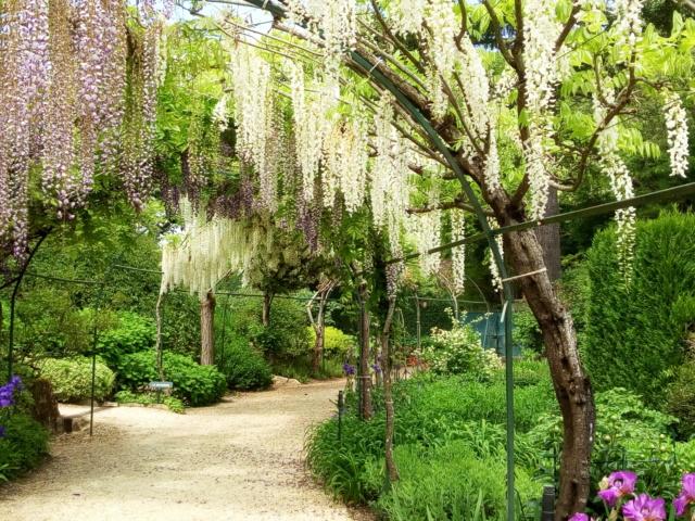 Parc Floral d'Apremont sur Allier 25110