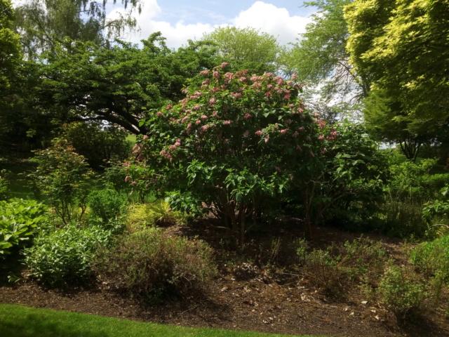Parc Floral d'Apremont sur Allier 25310