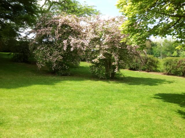 Parc Floral d'Apremont sur Allier 25410