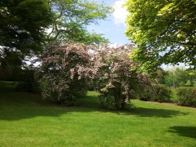 Parc Floral d'Apremont sur Allier 25510