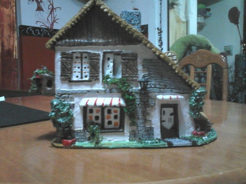 que penser vous de cette petite maison Dsc_1514