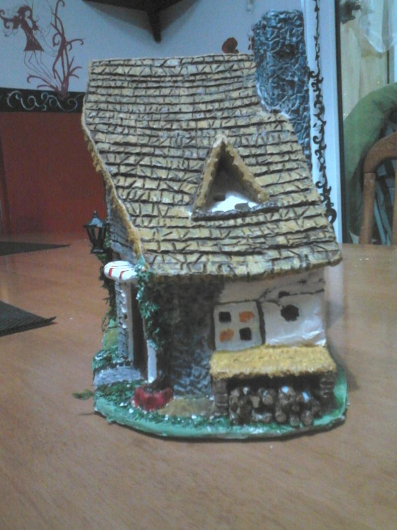 que penser vous de cette petite maison Dsc_1516