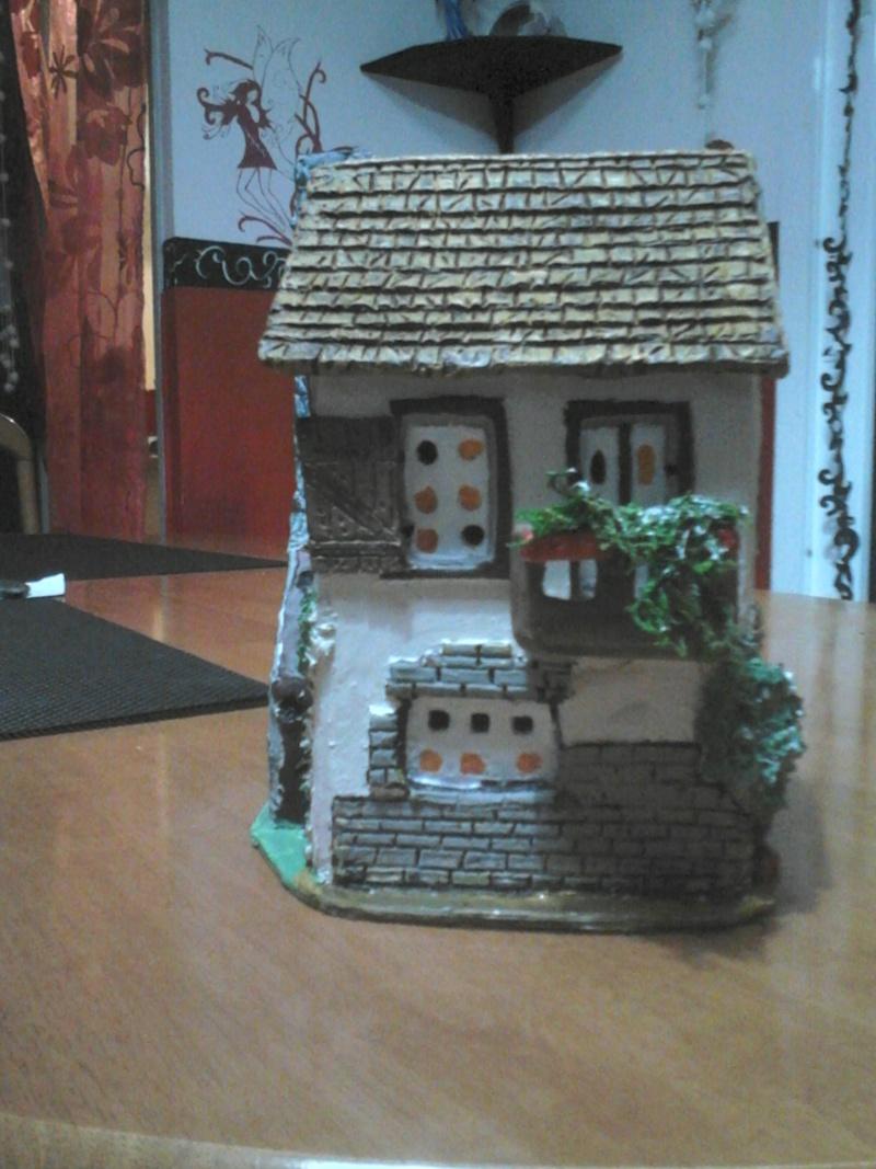 que penser vous de cette petite maison Dsc_1517