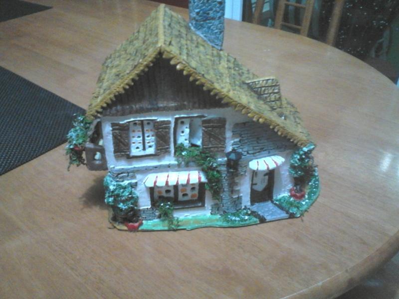 que penser vous de cette petite maison Dsc_1518
