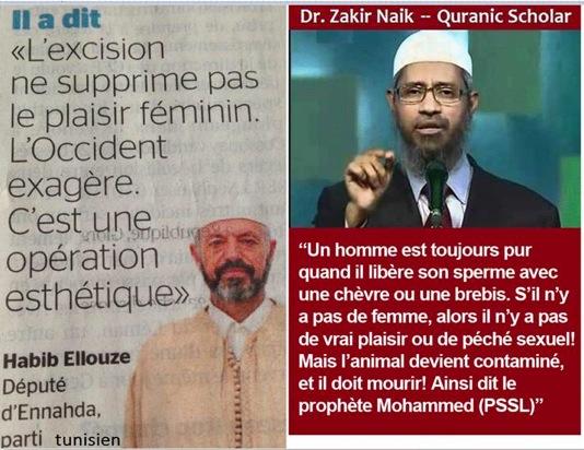Apprenons à pisser et déféquer halal Att00010