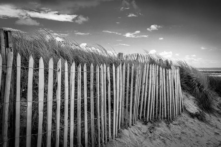 Dunes 1647_l10