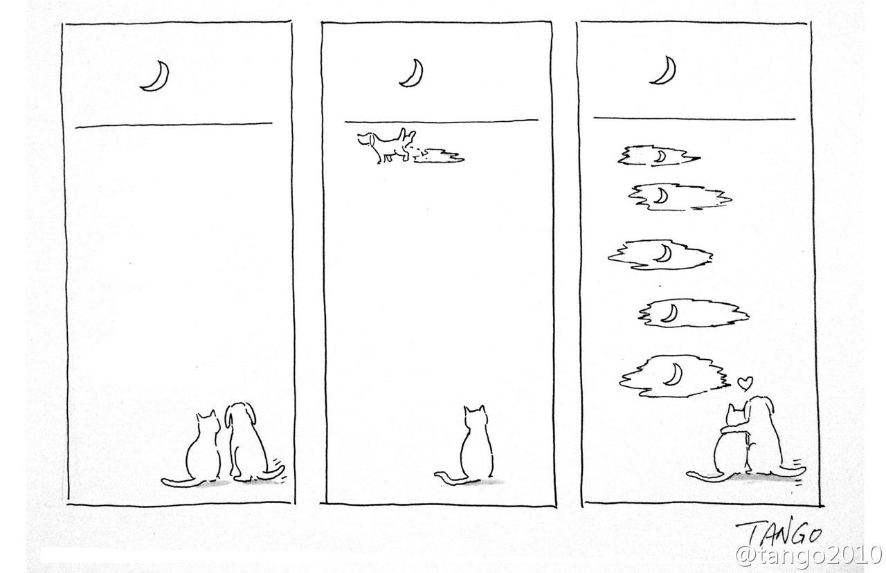 Bộ tranh đơn giản hài hước Tumblr21