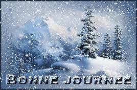 Cairns de Decembre 2014 - Page 2 Images11