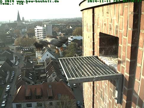 Diversen Duitsland 2015: Oberhausen/Mülheim/Karlsruhe/Bocholt e.a. Webcam21