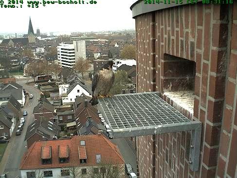 Diversen Duitsland 2015: Oberhausen/Mülheim/Karlsruhe/Bocholt e.a. Webcam23