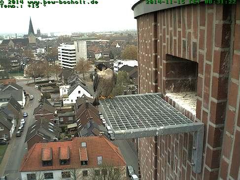 Diversen Duitsland 2015: Oberhausen/Mülheim/Karlsruhe/Bocholt e.a. Webcam24