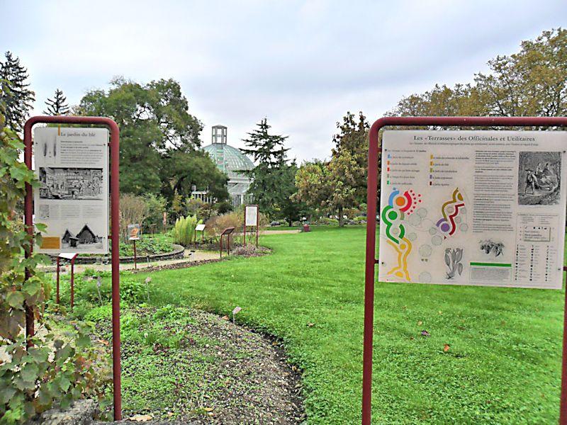Jardin botanique de Genève Jb_gen11