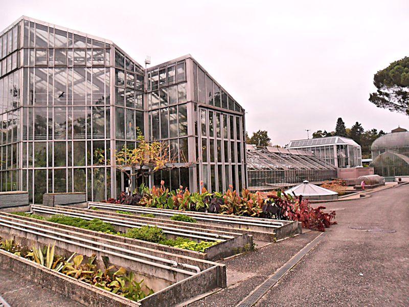 Jardin botanique de Genève Jb_gen15