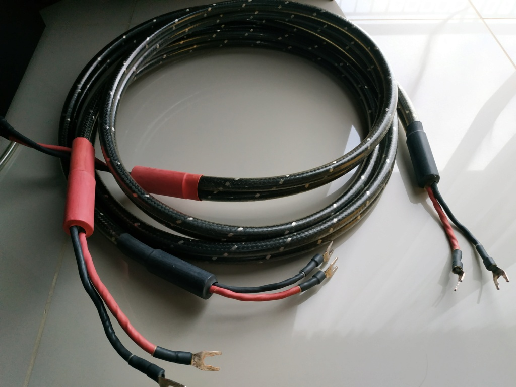 Wireworld Eclipse 3 speaker cable (Used) Wirewo10