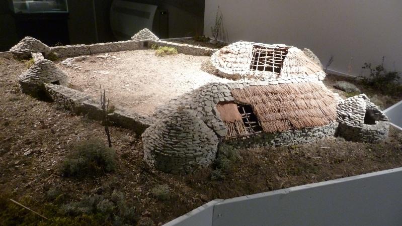 """Expo """" Jean Arnal et le néolithique en Languedoc """" à Lattes  P1050916"""