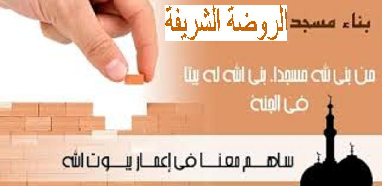 ثواب من بنى لله مسجدا( ساهم في بناء مسجد الروضة الشريفة) بقرية الحمام أبنوب.! Oao10