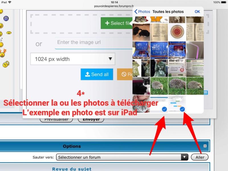 Un mystère!!! Poster une image dans le forum  B85bfe10