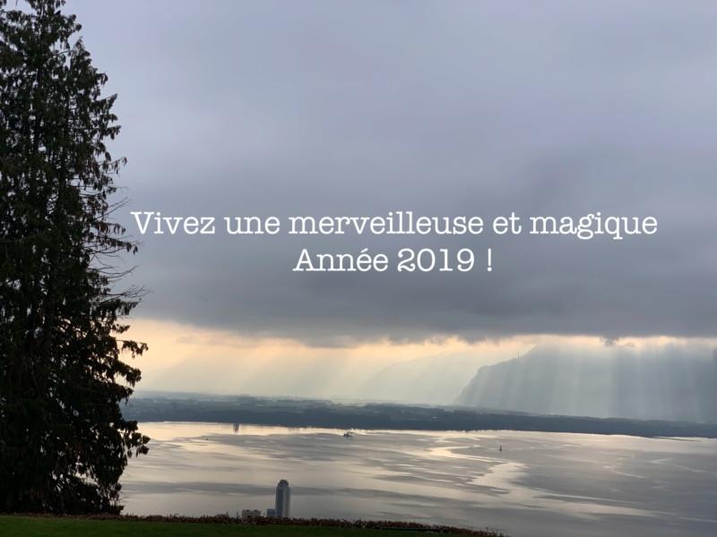 Nouvelle Année 2019 C3464810