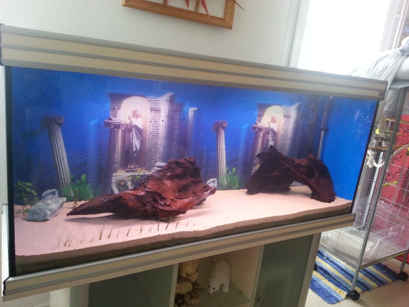 mis en route  aquarium 450l  20141110