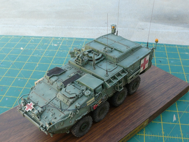 M 1133 Stryker MEV, M 1135 Stryker NBC RV P1130513