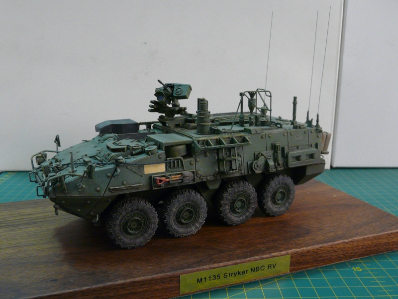 M 1133 Stryker MEV, M 1135 Stryker NBC RV P1130514