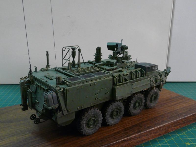 M 1133 Stryker MEV, M 1135 Stryker NBC RV P1130517