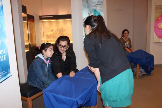 Musée de Préhistoire Libanaise 211
