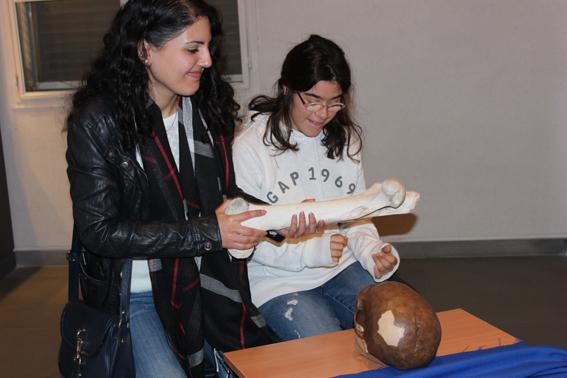 Musée de Préhistoire Libanaise - Page 2 311