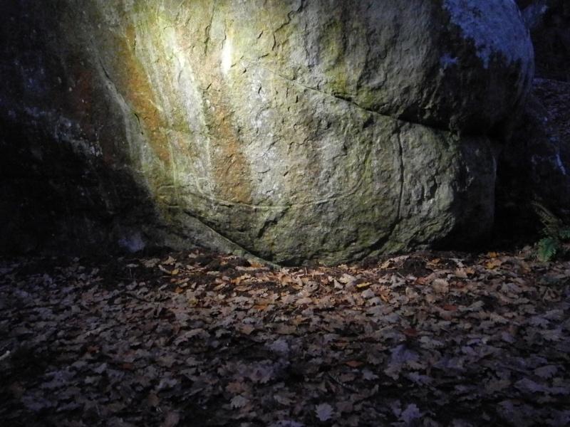 Sortie abris gravés de la forêt de Fontainebleau Dscn2511