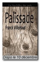 [Taurnada Editions] Palissade de Franck Villemaud Image10