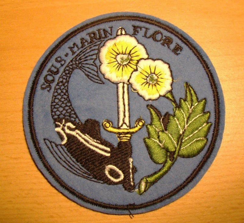 Ma collec. patchs Marine Nationale : sous-marins , cdo etc. - Page 5 Dsc03811